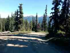 deer-park-campground-olympic-national-park-16