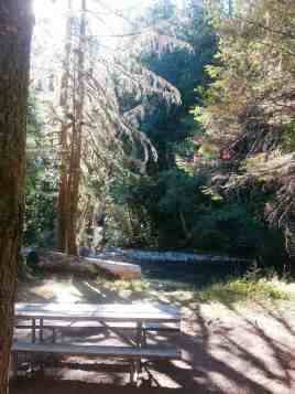 dosewallips-campground-olympic-national-park-11