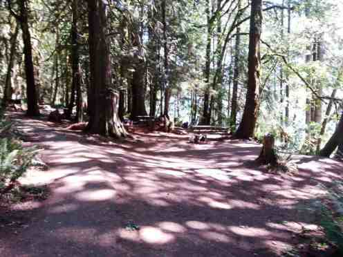 fairholme-campground-olympic-national-park-06