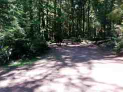 fairholme-campground-olympic-national-park-08