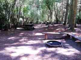 fort-ebey-state-park-campground-03
