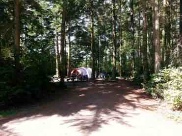 fort-ebey-state-park-campground-06