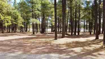 fort-tuthill-county-park-campground-flagstaff-08