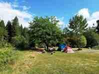 giant-redwoods-cam-destination-myers-flat-ca-15