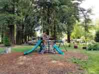 giant-redwoods-cam-destination-myers-flat-ca-16