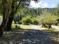 giant-redwoods-cam-destination-myers-flat-ca-21