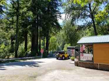 giant-redwoods-cam-destination-myers-flat-ca-22