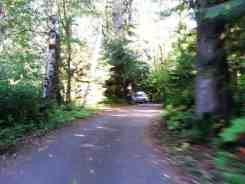 goodell-creek-campground-north-cascade-national-park-05