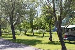 grass-sites