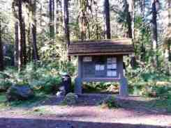 graves-creek-campground-olympic-national-park-15