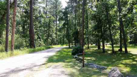 grizzly-creek-campground-blackhills-sd-07