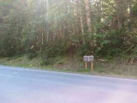 heart-o-the-hills-campground-olympic-national-park-17