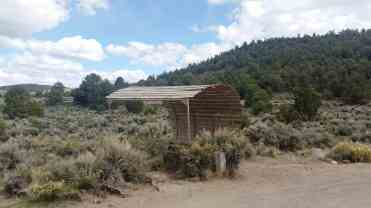 hickinson-petroglyphs-blm-campground-austin-nv-02