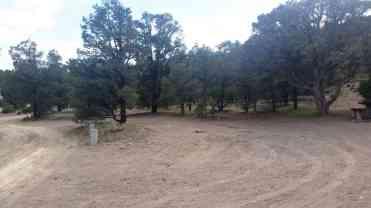 hickinson-petroglyphs-blm-campground-austin-nv-10