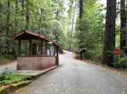 hidden-springs-campground-humboldt-redwoods-state-park-03