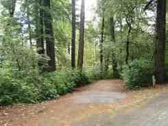 hidden-springs-campground-humboldt-redwoods-state-park-07