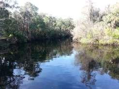 Hillsborough River State Park in Thonotosassa Florida River