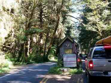 hoh-campground-olympic-national-park-01