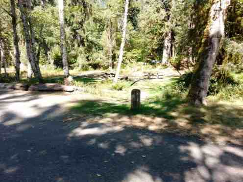 hoh-campground-olympic-national-park-06