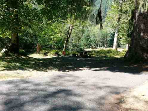 hoh-campground-olympic-national-park-10