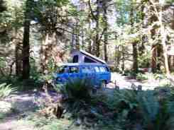 hoh-campground-olympic-national-park-18