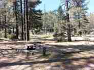 idyllwild-county-park-campground-6