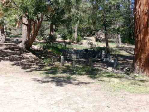 idyllwild-county-park-campground-8