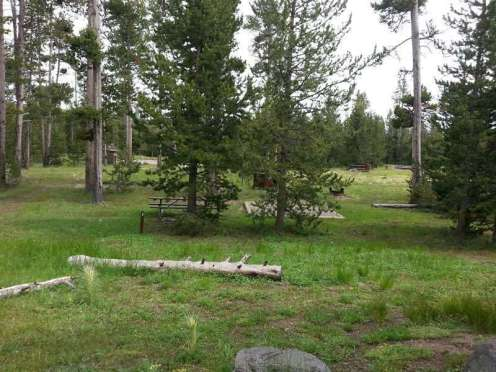 indian-creek-campground-yellowstone-national-park-backin-grass