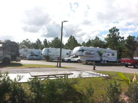 International RV Park and Campground in Daytona Beach Florida Backins