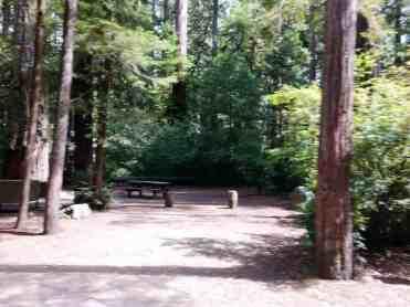 jedediah-smith-campground-05