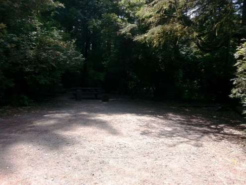 jedediah-smith-campground-07