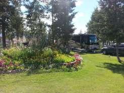 jim-and-marys-rv-park-missoula-mt-large-pull-thru-flowers2