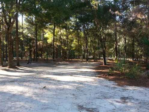 Kelly Park / Rock Springs in Apopka Florida Backin Site