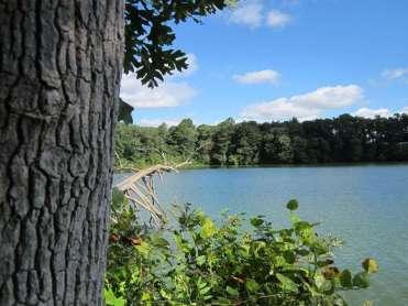 killens-pond-state-park-felton-delaware-2