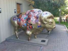 Great Falls KOA Welcome Buffalo