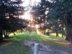 liberty-lake-regional-park-campground-washington-16
