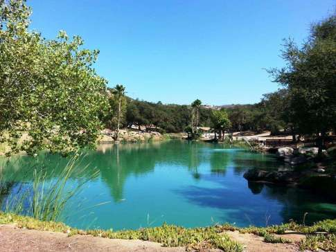 lilac-oaks-campground-california-02