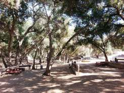 lilac-oaks-campground-california-11