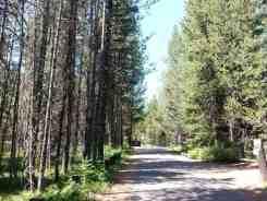 lizard-creek-campground-grand-teton-national-park-03