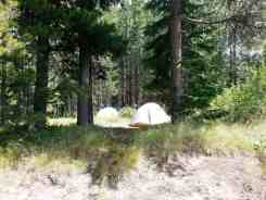lizard-creek-campground-grand-teton-national-park-09
