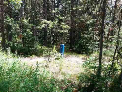 Lizard Creek Campground Moran Wyoming Rv Park