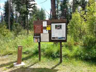 logging-creek-campground-glacier-national-park-02