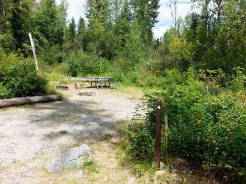 logging-creek-campground-glacier-national-park-08