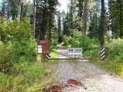 logging-creek-campground-glacier-national-park-12