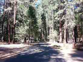 lower-pines-campground-yosemite-national-park-04