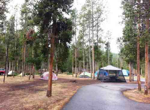 madison-campground-yellowstone-national-park-08