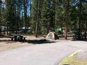 madison-campground-yellowstone-national-park-pull-thru-tent