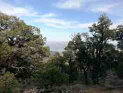 mahogany-flat-campground-death-valley-national-park-19