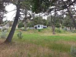 mammoth-campground-yellowstone-national-park-rv-site-grass