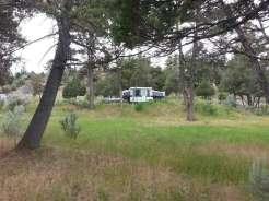 mammoth-campground-yellowstone-national-park-rv-site-grass